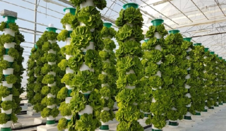 pros of vertical farming